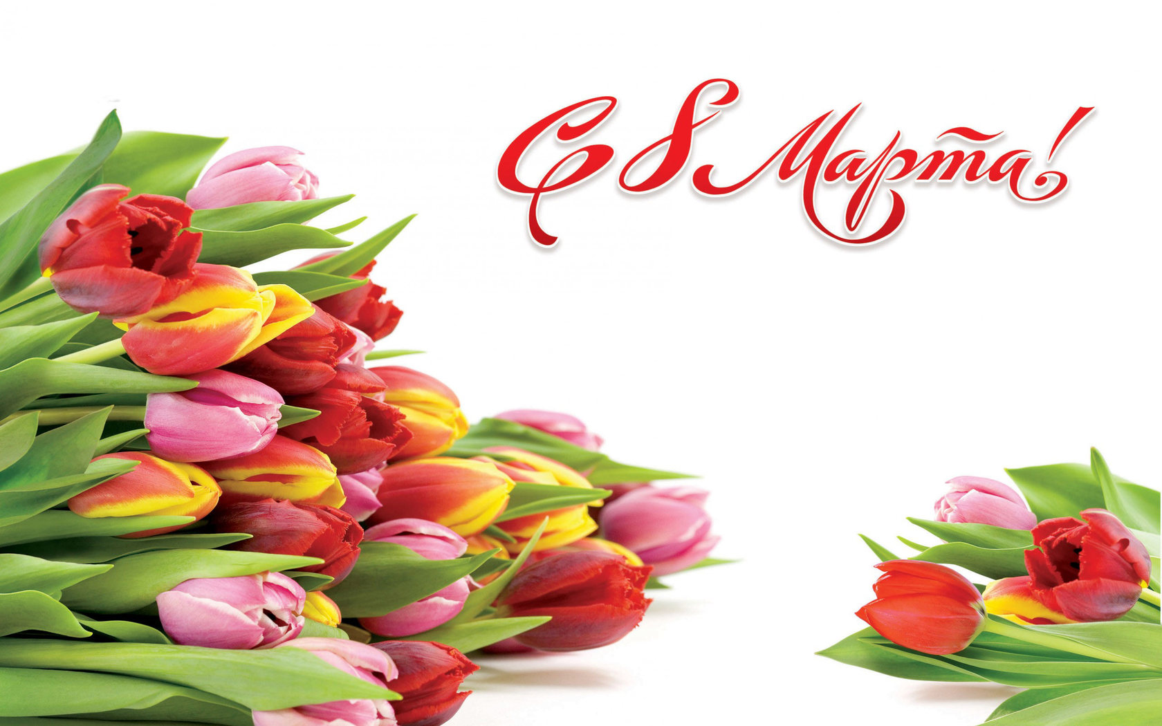 поздравить с 8 марта тюльпаны кореопсис объединяет